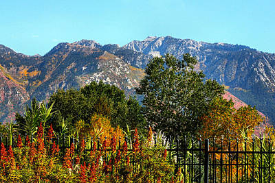 Wasatch Mountains In Autumn Art Print by Tracie Kaska