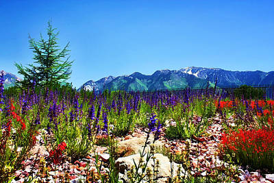 Wasatch Mountains In Spring Art Print by Tracie Kaska