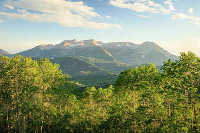 Photograph - Wasatch Summer Green by Johnny Adolphson