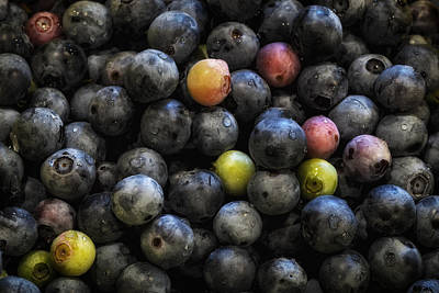 Photograph - Washed Blueberries by James Barber