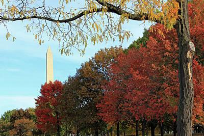 Photograph - Washington Autumn by Cora Wandel