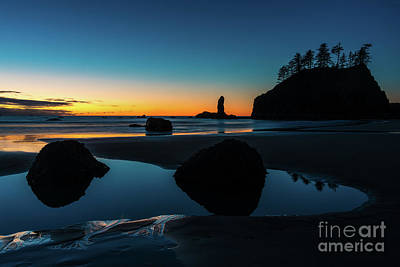 Photograph - Washington Coastal Twilight by Mike Reid