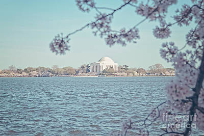 Us Capital Photograph - Washington Dc In Spring by Emily Kay