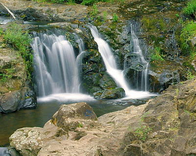 Photograph - Washington Falls 3 by Marty Koch