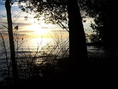 Photograph - Washington Island Morning 1 by Anita Burgermeister