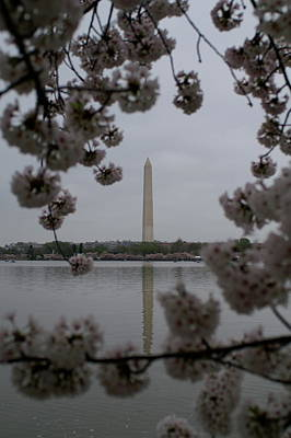 Photograph - Washington Monument by Henri Irizarri