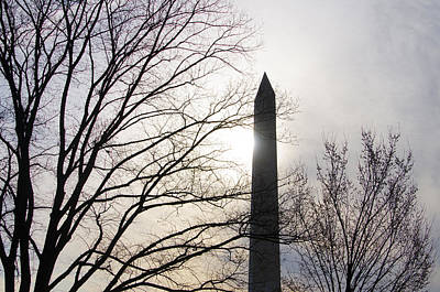 Washington Monument Digital Art - Washington Monument Through The Trees In Spring by Bill Cannon