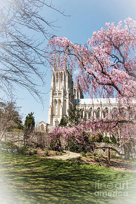 Photograph - Washington National Cathedral by Judy Wolinsky