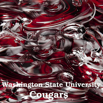 Photograph - Washington State University Cougars by David Patterson