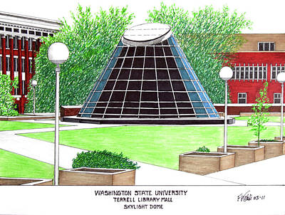 Drawing - Washington State University by Frederic Kohli