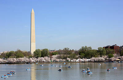 Photograph - Washington Tidal Basin In Spring by Mary Haber