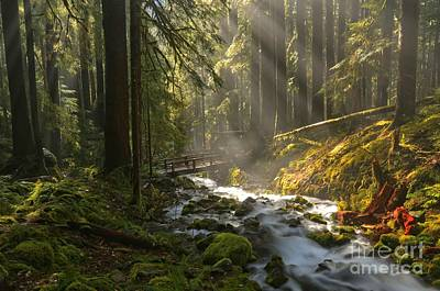 Photograph - Washington Wilderness by Adam Jewell