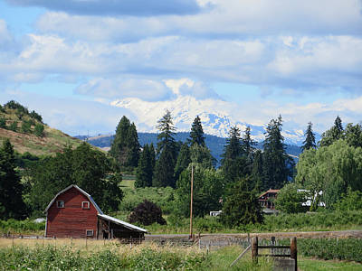 Photograph - Washington's Mt. Adams As Seen From The Hood River Oregon Area by Elizabeth Rose