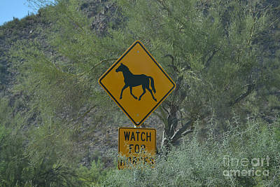 Photograph - Watch For Horses by Heather Kirk