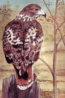 Watch Hawk Art Print by Debra Sandstrom