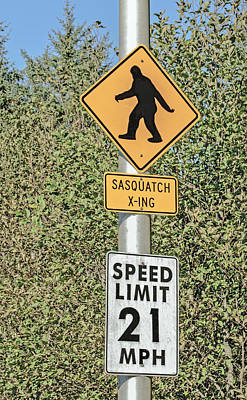 Photograph - Watch Out For The Sasquatch by Tikvah's Hope