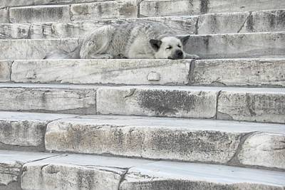 Photograph - Watch Your Step - Acropolis by KJ Swan