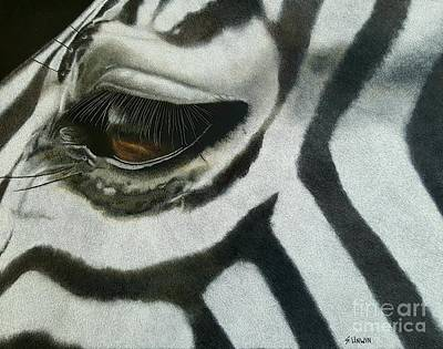 Drawing - Watchful Eye  by Sheryl Unwin