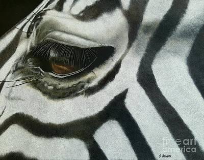 Drawing - Watchful Eye  by Sheryl Unwin