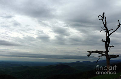 Photograph - Watching Over Shenandoah Valley by Christiane Schulze Art And Photography