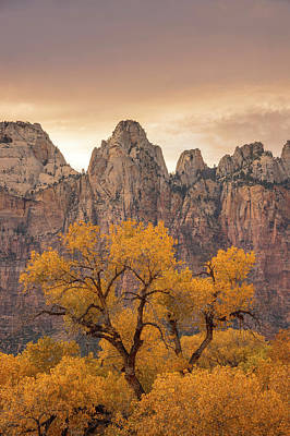 Photograph - Watching Over Zion  by Dustin LeFevre