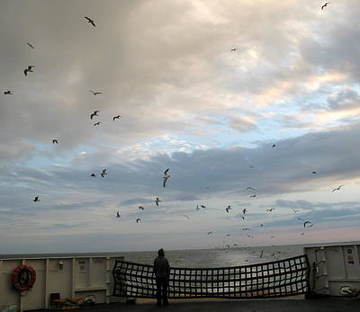 Photograph - Watching Seagulls On The Cape May Lewes Ferry by Kathy Barney