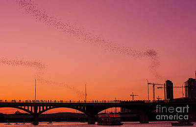 Watching The Bat Departure From The Congress Avenue Bridge At Dusk Is One Of The Top 10 Things To Do In Austin Texas Art Print