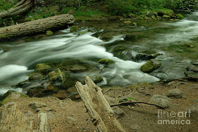Photograph - Watching The Flow Of Things by Jeff Swan