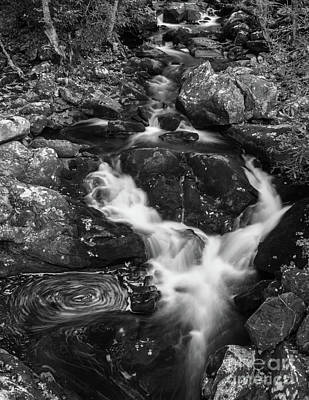 Photograph - Watching The River Flow by John Greco
