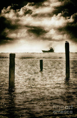 Photograph - Watching The Ships Roll By Outer Banks by Dan Carmichael