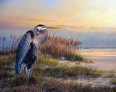 Watching The Sun Go Down Art Print by Brian Tarr