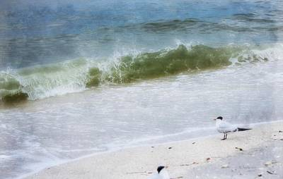 Watching Waves Crest And Break Print by Barbara Chichester