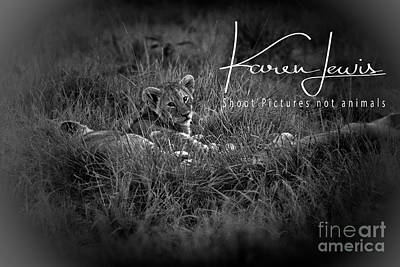 Art Print featuring the photograph Watching You Watching Me by Karen Lewis