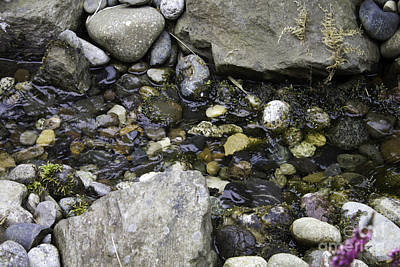 Photograph - Water And Rocks by Donna L Munro
