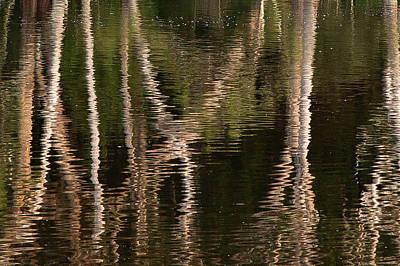 Water Bumps Art Print by David Benson