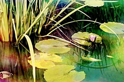 Photograph - Water Color Garden by Diana Angstadt