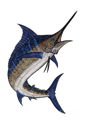 Blue Marlin Mixed Media - Water Color Tribal Marlin IIi by Carol Lynne