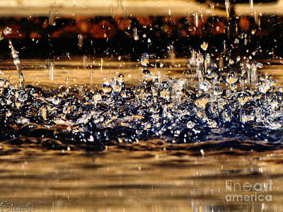 Photograph - Water Dancer by September  Stone