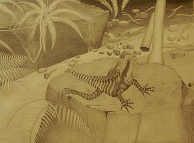 Water Dragon Lizard Art Print by Brian Leverton