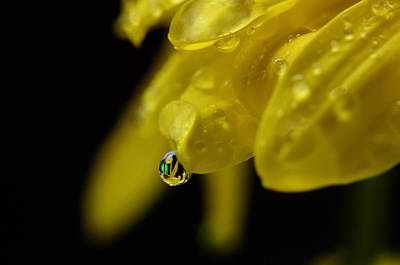 Water Drop Reflections Art Print by Laura Mountainspring