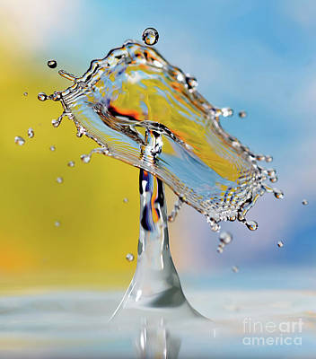 Photograph - Water Drops by Colin Rayner
