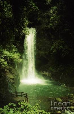 Photograph - water fall Costa Rica by Ted Pollard