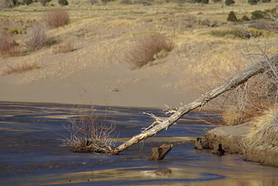 Water Flow In The Great Sand Dunes Art Print