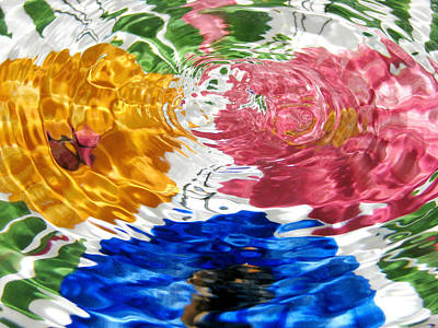 Photograph - Water Flowers by Diana Angstadt