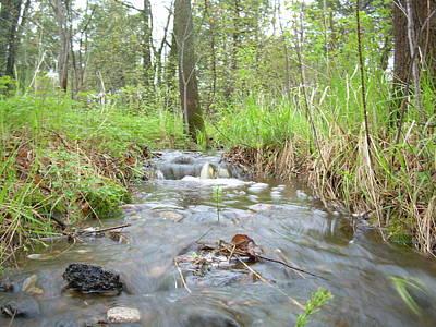 Photograph - Water Flows After A May Rain by Kent Lorentzen
