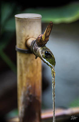 Photograph - Water Fountain by Endre Balogh