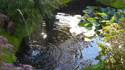 World Forgotten - Water Garden Spout, Pond and Ripples by Richard Griffin