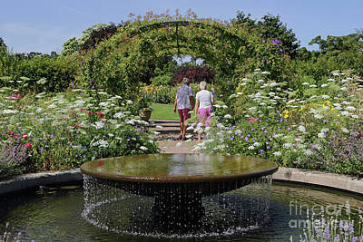 Photograph - Water Garden Wisley by Julia Gavin