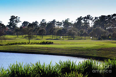 Photograph - Water Hazard Tpc Sawgrass by Randy J Heath
