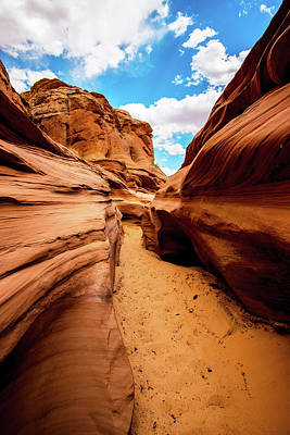 Photograph - Water Holes Canyon Trail by Norman Hall
